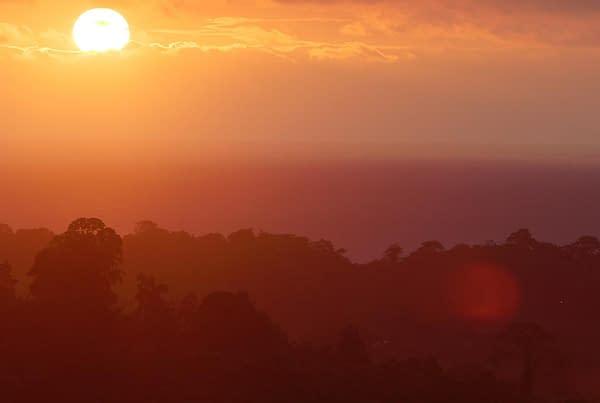 Rainforest Sunset in Mompiche